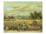 Picking Cotton Giclee Print by William Aiken Walker