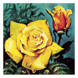 Rose with Dew Giclee Print by  McConnell