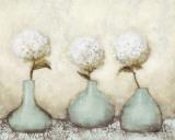HortensiaII Posters par Danielle Nengerman
