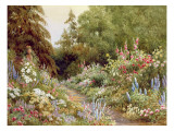 Herbaceous Border Giclee Print by Evelyn L. Engleheart