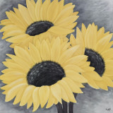 Sunflower Serenade II Prints by Kaye Lake