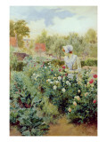 Dahlias, 1896 Giclee Print by Alfred Augustus Glendenning