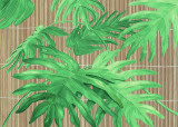 Tropical Leaves I Prints by D. Patrian
