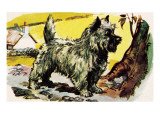 Cairn Terrier Giclee Print by English School