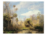 Florida Palms Giclee Print by Hermann Herzog
