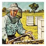Bee Keeper Giclee Print by  English School