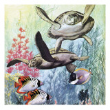 Undersea World Giclee Print by  English School
