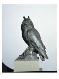 Owl Giclee Print by  Giambologna
