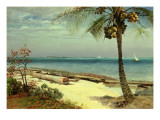Tropical Coast Giclee Print by Albert Bierstadt