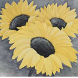 Sunflower Serenade I Prints by Kaye Lake