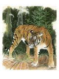 Bali Tiger Giclee Print by Maurice Wilson