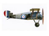 Sopwith 7F.1 Snipe Giclee Print by  English School