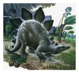 Stegosauro  Stampa giclée di  English School