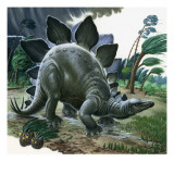 Stegosaurus Giclee Print by  English School