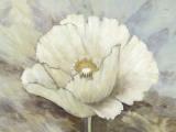 White Elegance II Posters by Danielle Nengerman