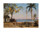 Tropical Scene Giclee Print by Albert Bierstadt