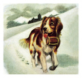 St Bernard Dog Giclee Print by  McConnell