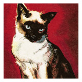Siamese Cat Giclee Print by  McConnell