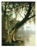 In the Bayou Giclee Print by  Meeker