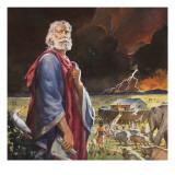 L'Arca di Noè Stampa giclée di  McConnell