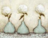 HortensiaI Affiches par Danielle Nengerman