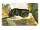 Rat Leaving a Ship Giclee Print by  English School
