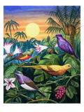 Tropical Sunbirds Premium Giclee Print by John Chalkley