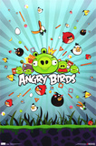 Angry Birds Photo