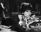 Claudia Cardinale - The Pink Panther Photo