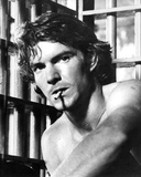 Dennis Quaid - The Night the Lights Went Out in Georgia Photo