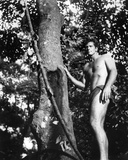 Ron Ely - Tarzan Photo