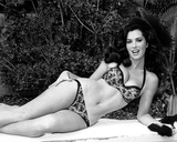 Edy Williams Photo