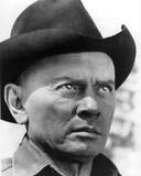 Yul Brynner - Westworld Photo