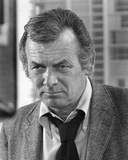 David Janssen - Harry O Photographie