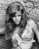 Raquel Welch - One Million Years B.C. Photo