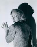 Vera Miles Photo