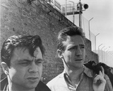 In Cold Blood Photo
