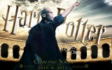Harry Potter and the Deathly Hallows: Part II - Lord Voldemort Plakater