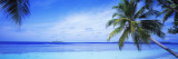 Ocean, Island, Water, Palm Trees, Maldives Wall Decal by  Panoramic Images