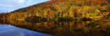 Connecticut River, Brattleboro, Vermont, USA Wall Decal by  Panoramic Images