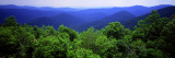Smoky Mountain National Park, Tennessee, USA Wall Decal by  Panoramic Images