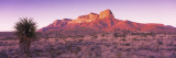 Morning, Mountain, National Park, Guadalupe Mountains, Texas, United States Wall Decal by  Panoramic Images