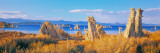 Tufa Formations Mono Lake, California, USA Wall Decal by  Panoramic Images