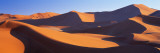 Namib Desert, Nambia, Africa Wall Decal by  Panoramic Images