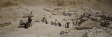 Workers Working at an Archeological Site, Valley of the Queens, West Bank, Luxor, Egypt Wall Decal by  Panoramic Images