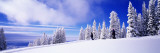 Steamboat Springs, Colorado, USA Adesivo murale di Panoramic Images,