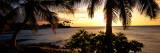 Kohala Coast, Hawaii, USA Wall Decal by  Panoramic Images