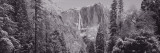 Yosemite Falls, California, USA Wall Decal by Panoramic Images 
