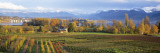Farm, Rapperswil, Zurich, Switzerland Wall Decal by  Panoramic Images