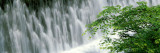 Waterfall on Kibune River, Kyoto, Japan Wall Decal by  Panoramic Images